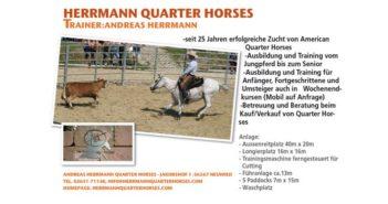 Reitstall_10_16_Herrmann_QH